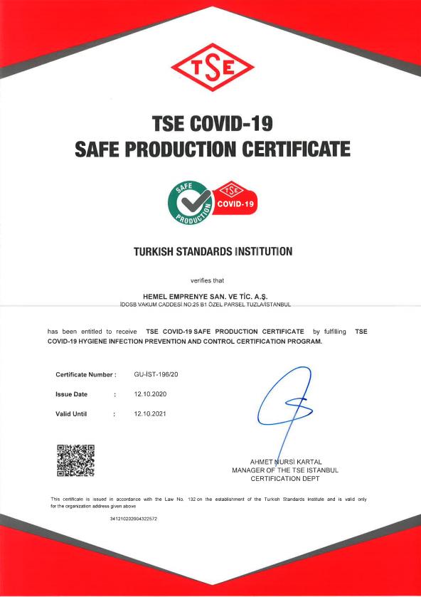 TSE_Covid19_Hemel_EN.PNG (195 KB)